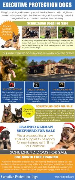 Trained German Shepherd For Sale