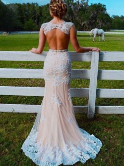 Shop Pretty Trumpet/Mermaid Scoop Neck Champagne Tulle Appliques Lace Sweep Train Open Back Ball ...