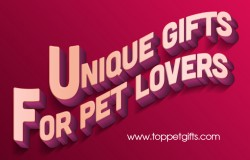 unique gifts for pet lovers