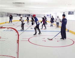 Synthetic ice sheets Indiana