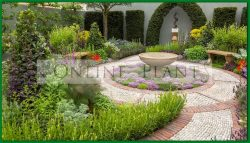 Garden Design/Consultation Australia wide