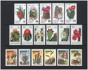 buy stamps