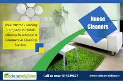 House CleanersHouse