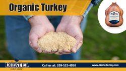 turkey breast | https://diestelturkey.com/fresh-roasted-no-salt-turkey-breast