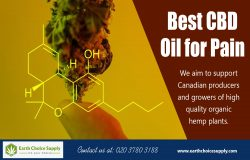 Best CBD Pain Oil | Call Us – 416-922-7238 | earthchoicesupply.com