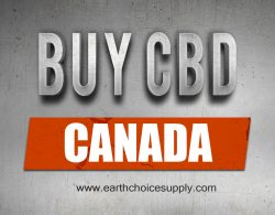 Buy CBD Canada | Call Us – 416-922-7238 | earthchoicesupply.com