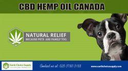 CBD Hemp oil Canada | Call Us – 416-922-7238 | earthchoicesupply.com