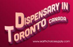 Dispensary Toronto Canada | Call Us – 416-922-7238 | earthchoicesupply.com