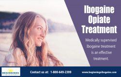 Ibogaine Opiate Treatment|https://beginningsibogaine.com/