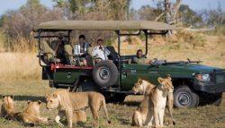 African safari tour company
