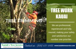 Tree Work Kauai