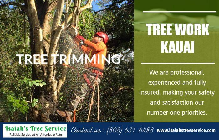 Tree Work Kauai