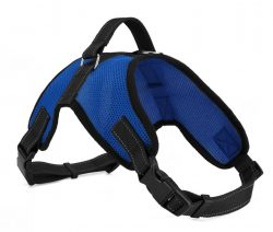 dog mesh harness manufacturer