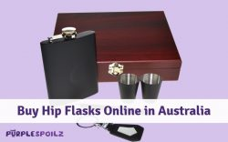 Buy Hip Flasks Online in Australia from PurpleSpoilz