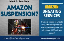 Amazon Ungating Services | thefunnelguru.com