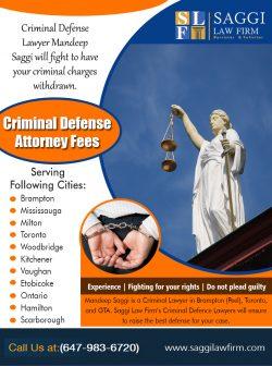 Criminal Defense Attorney Fees