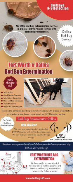 Fort Worth & Dallas Bed Bug Extermination | 4692000637 | bullseyek9.com