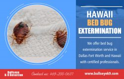 Hawaii Bed Bug Services | 4692000637 | bullseyek9.com