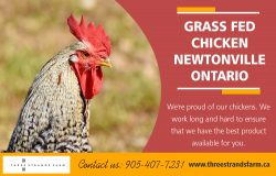 Grass Fed Chicken Newtonville Ontario