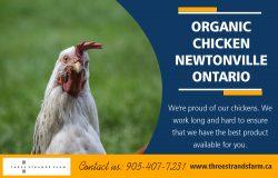 Organic Chicken Newtonville Ontario