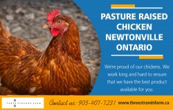Pasture Raised Chicken Newtonville in Ontario