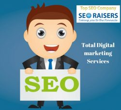 Total Digital Marketing Services By SEORAISERS