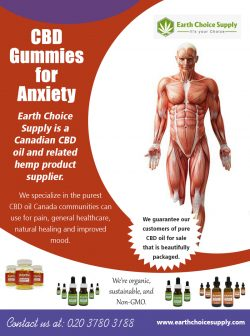 CBD Gummies for Anxiety