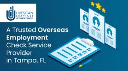 Idu LLC – A Trusted Overseas Employment Check Service Provider in Tampa, FL
