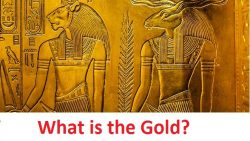 What is the Gold?