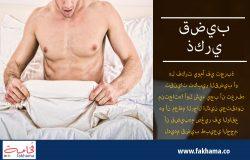 قضيب ذكري | www.fakhama.co