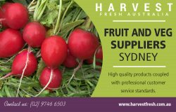 Fruit and Veg Suppliers Sydney | Call – 02 9746 6503 | harvestfresh.com.au