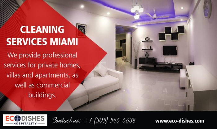 Cleaning Services Miami | 3055466638 | eco-dishes.com