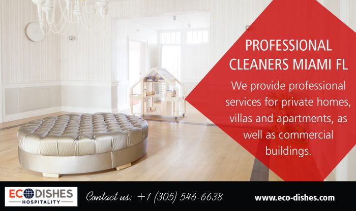 Professional Cleaners Miami FL | 3055466638 | eco-dishes.com