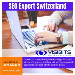 SEO Expert Switzerland