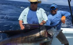 Get Affordable Quepos Fishing Packages by Blue Horizon Costa Rica
