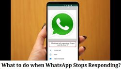 What to do when WhatsApp stops responding?