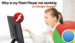 Why is my Flash Player not working on Google Chrome?