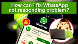 How can I fix WhatsApp not Responding Problem?