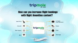 How can you increase flight bookings with flight Amenities content?