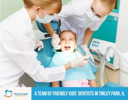 North Creek Dental Care – A Team of Friendly Kids' Dentists in Tinley Park, IL