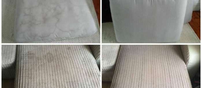 Reasons To Invest In Professional Sofa Cleaning Services