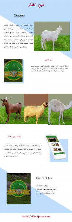 ذبح اغنام | Sheepksa