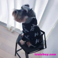 秋冬用 ドッグウェア Boy London パーカー 犬服 ボーイロンドン つなぎパーカー 防寒 ワンちゃん服