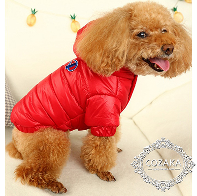 champion-dog-wear-down-jacket