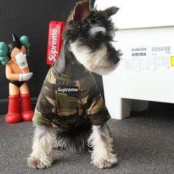 ブランド supreme 犬の服