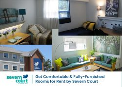 Get Comfortable & Fully-Furnished Rooms for Rent by Severn Court