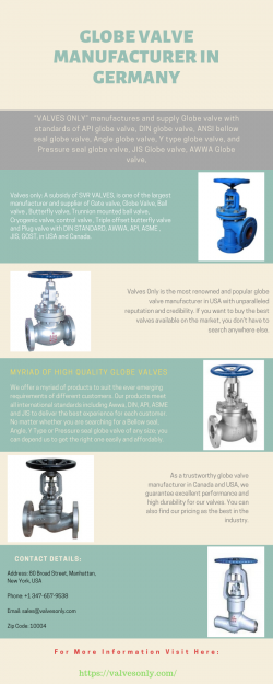Globe Valve Manufacturer in Germany | Valvesonly