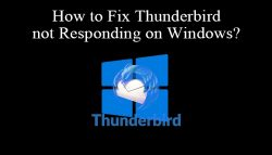 How to Fix Thunderbird Not Responding on Windows?