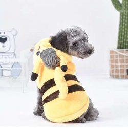 犬服 ドッグウェア 名探偵ピカチュウ