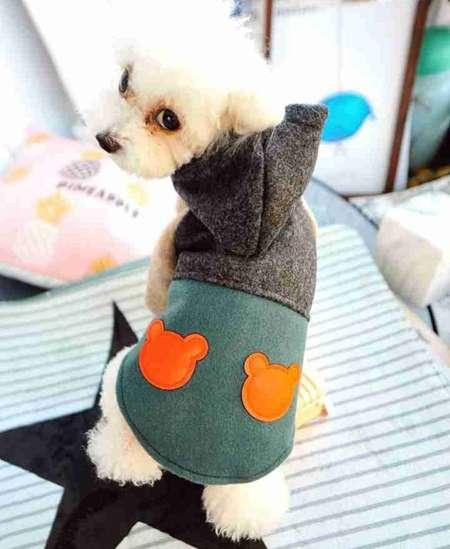 くま コート ラシャ 犬服
